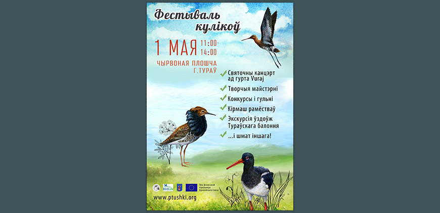 Poster of Shorebirds Festival in Turov