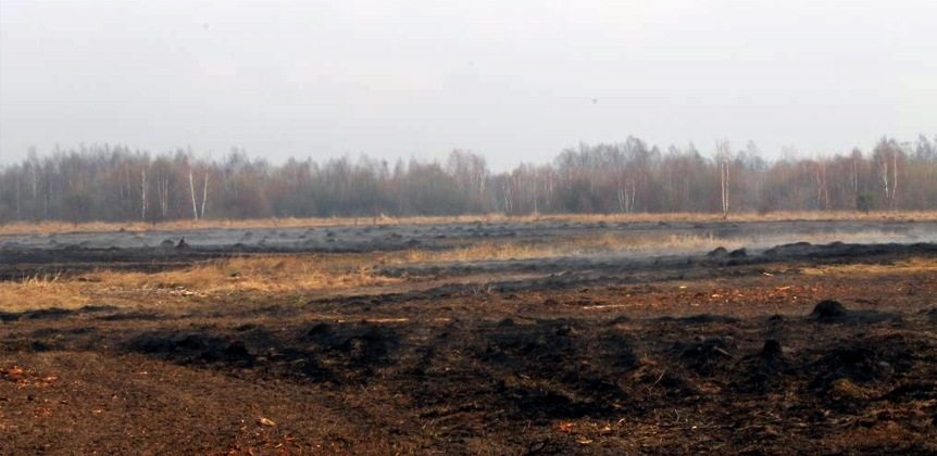 Peatland after controlled fire of dry vegetation